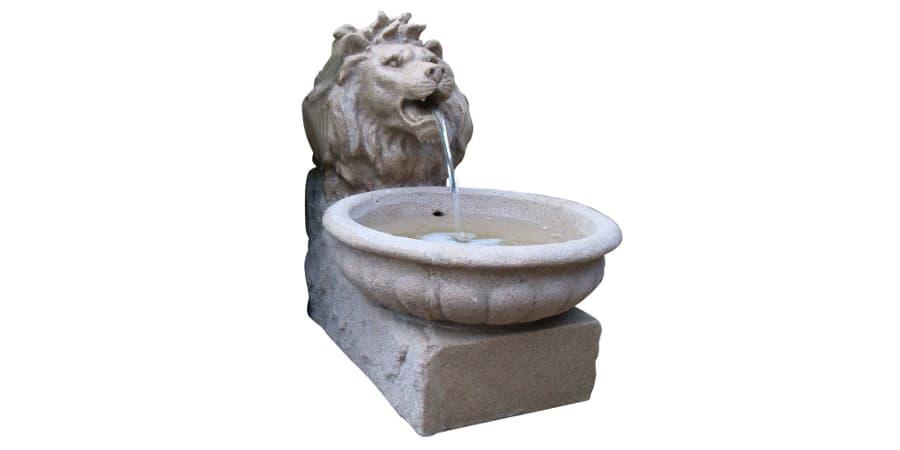 fuente agua de leon comprar